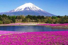 Japonsko - země úsměvů