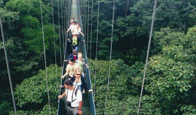 Kostarika Arenal lavka
